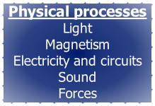 Physical processes Light  Magnetism Electricity and circuits Sound Forces